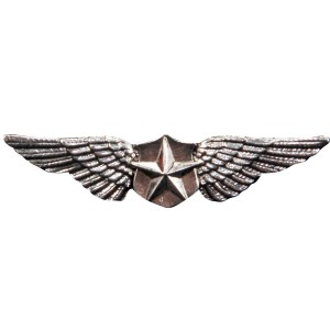 Novelty Pilot Wings Pin - Gray / One-Size