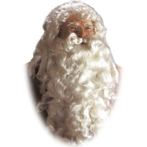 Santa Deluxe Wig & Beard - White / One Size