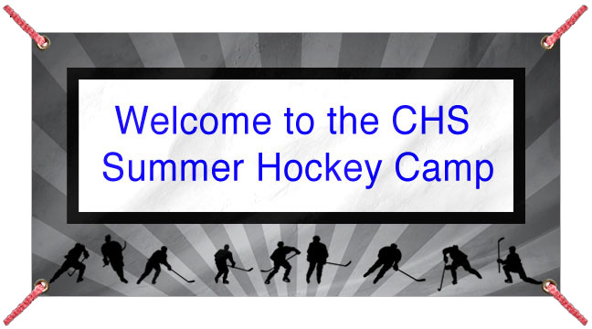 Hockey Party - Custom Banner