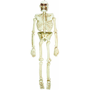 Skeleton Hanging Decoration- 5ft