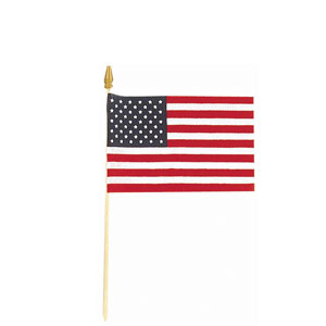 USA Flag - Cloth 12in x 8in
