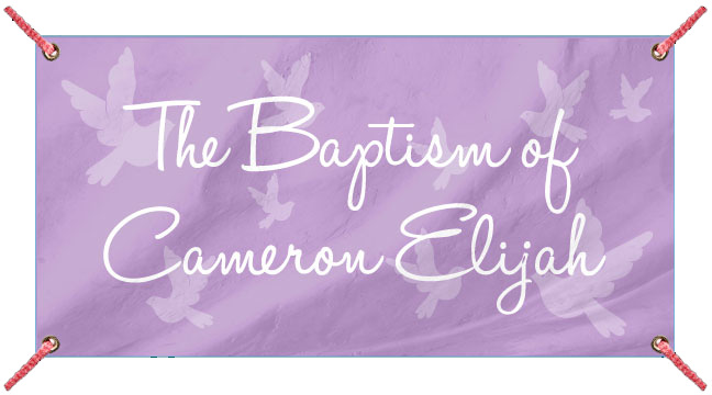 Purple Doves Flying - Custom Banner