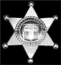 SILVER SHERIFF BADGES PLASTIC