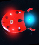Flashing Lady Bug Blinky