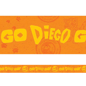 Go Diego Go Crepe Streamer- 30ft
