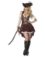 Sexy Swashbuckler Adult Costume - Small