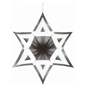 3-D Star of David Decoration